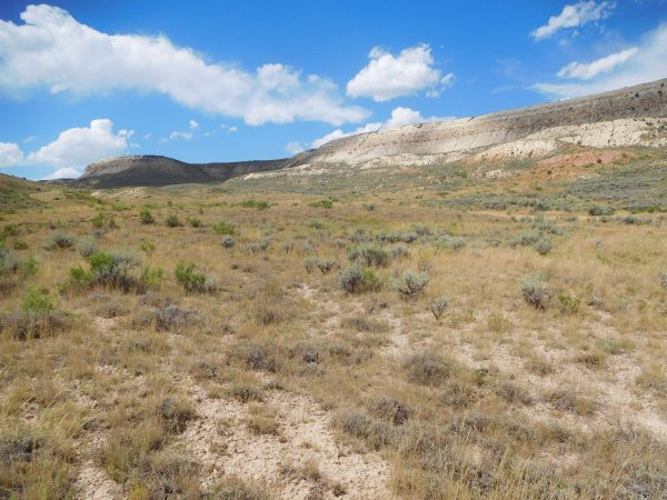 Near the start of the Historic Quarry Trail. The quarry is just below the top of the butte.