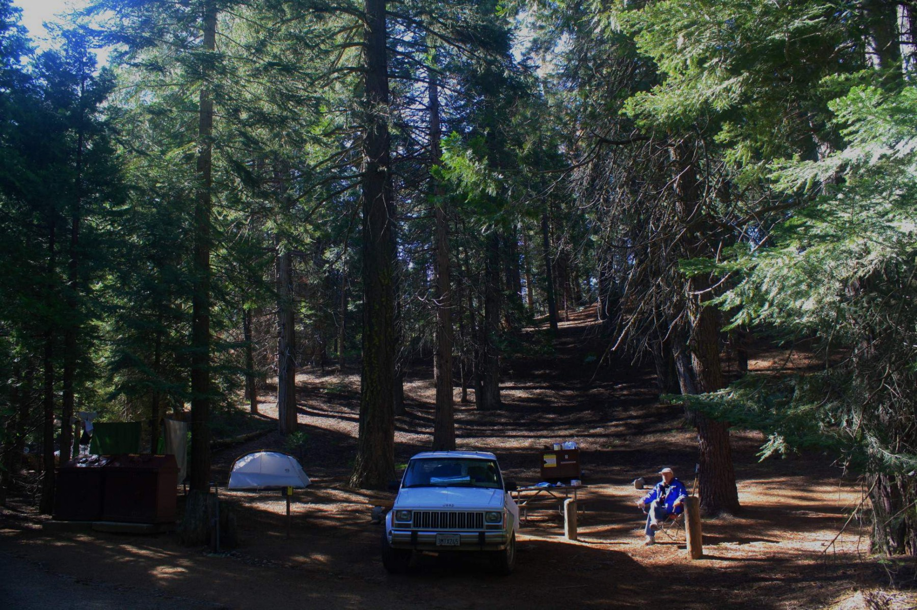 Sequoia National Park on 1995 Jeep Cherokee Country Problems